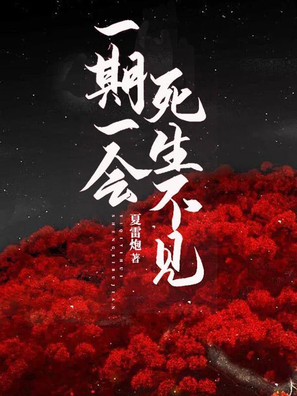 陆清音萧宁远出自哪本小说作者是夏雷炮